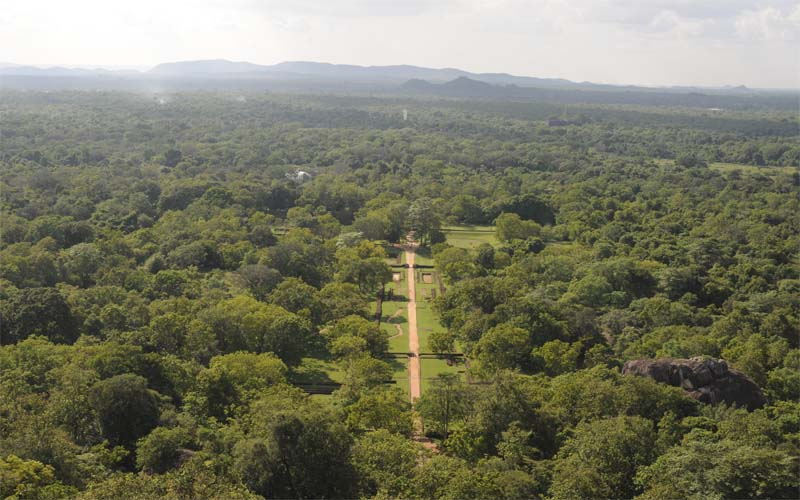 Sigiriya lions rock excursie sri lanka original asia - Trappen rots ...