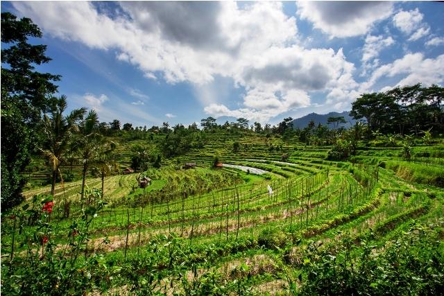 Rondreis Bali En De Gili U0026 39 S
